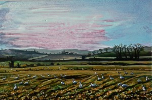 Wild Geese in a Field in Creaghadooes, oil on board, 10 x 15 cm