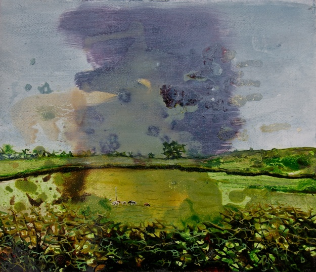 Galbraith's Cows up on Binnion Hill, oil on paper, 36 x 41 cm