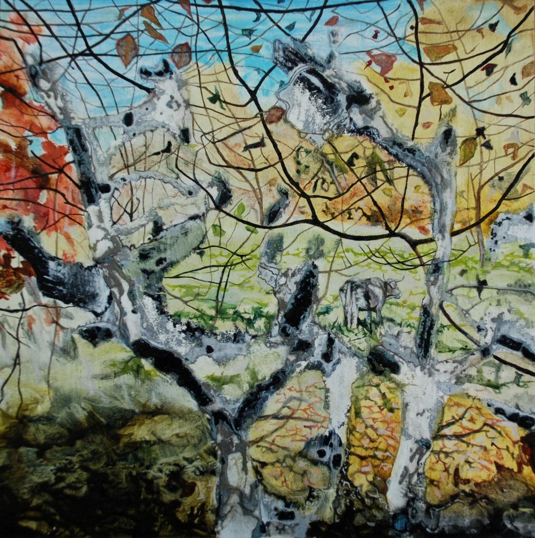 quinn ann 'Cow seen through Trees, Pyrenees'
